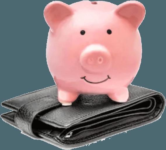 piggie-on-wallet
